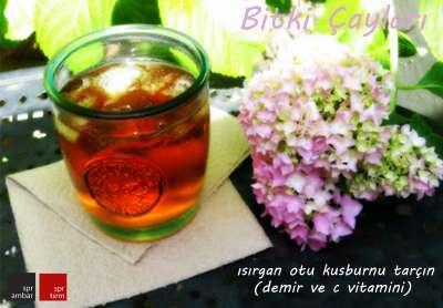 ısırgan otu-tarçın-kuşburnu çayı_01