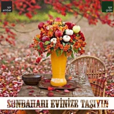 SPR AMBAR - dış mekan bahçe mobilya ve yaşam - sonbaharı evinize taşıyın